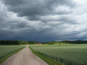Jak pogoda wpływa na zdrowie